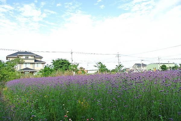 2014_0503AD.JPG