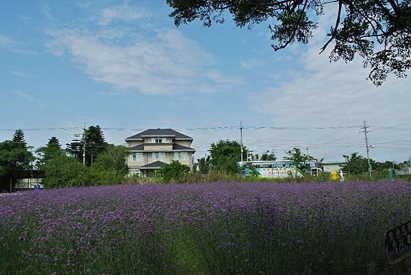 2014_0503BU.JPG