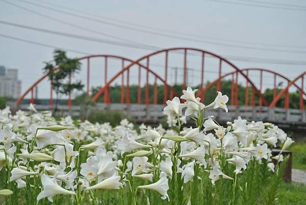 2014_0526EH.JPG