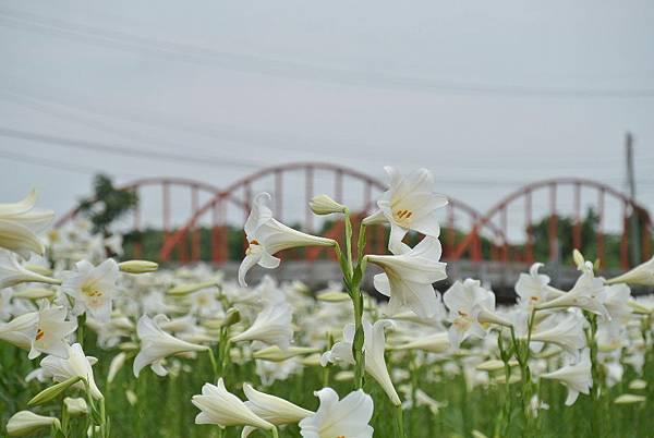 2014_0526GE.JPG