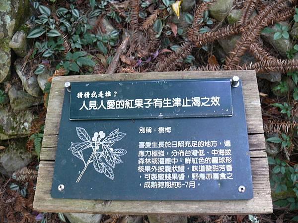 2014_1019AI.JPG