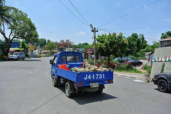 DSC_4549.JPG