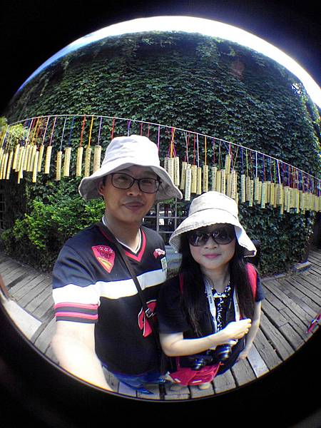 IMG_20150707_085355.jpg