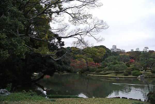 2015_1120BR.JPG