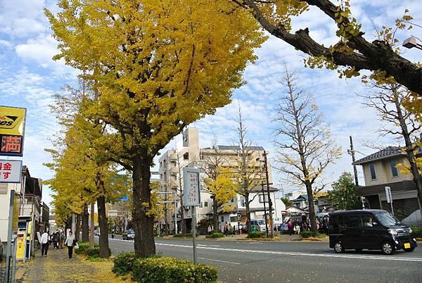 2015_1127AE.JPG