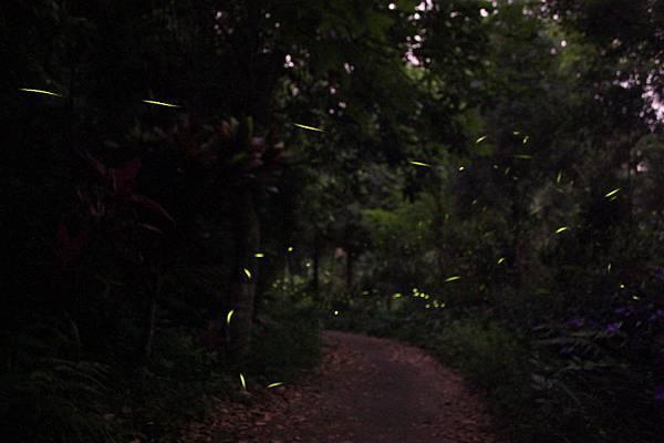 20080112_036.jpg