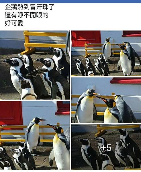 北海道_171101_0017.jpg