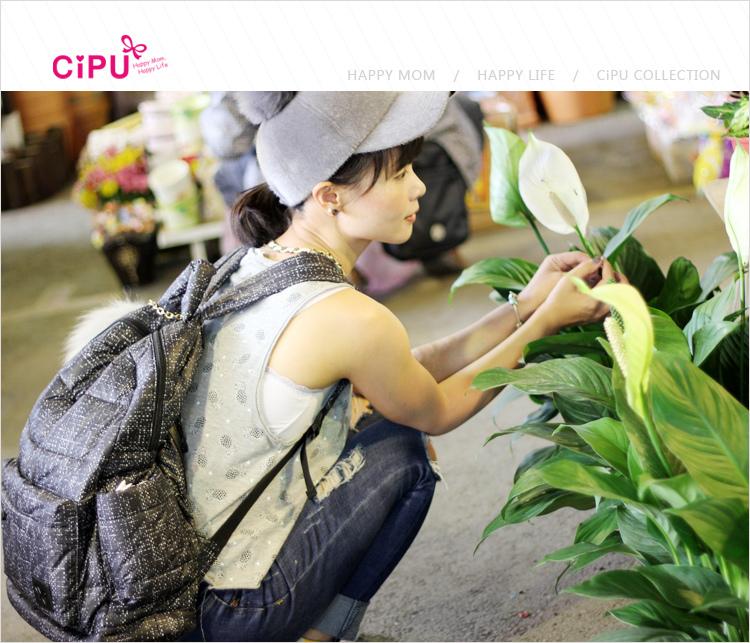 cip026.jpg