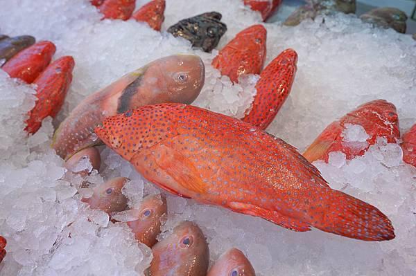 阿興生魚片11.jpg