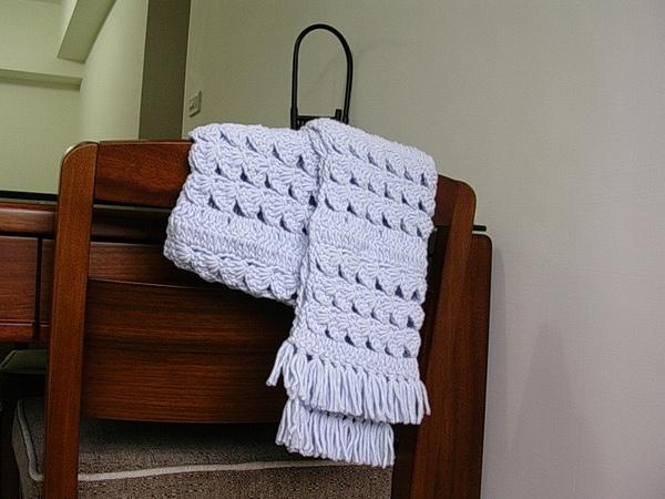 給eve的圍巾 (7).JPG