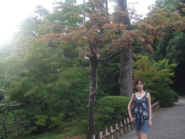2006_0821名古屋0088.JP