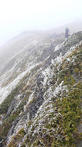 20081213-合歡山Day2-2 (合歡北峰) 5