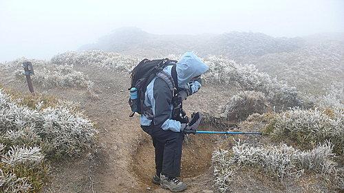 20081213-合歡山Day2-2 (合歡北峰) 10