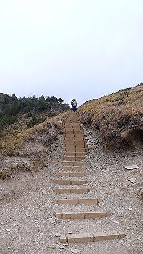 20081213-合歡山Day2-2 (合歡北峰) 17