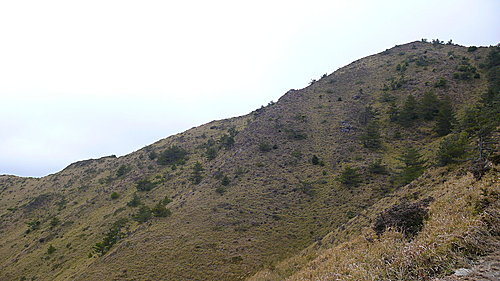 20081213-合歡山Day2-2 (合歡北峰) 18