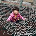 在公園玩的小乖