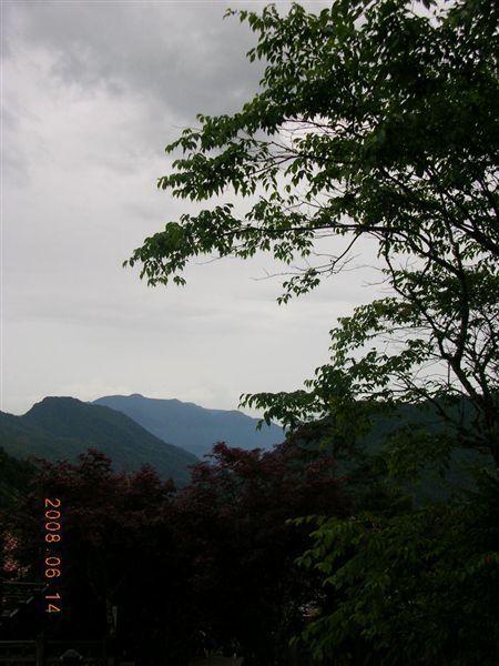 24太平山莊-雲和樹