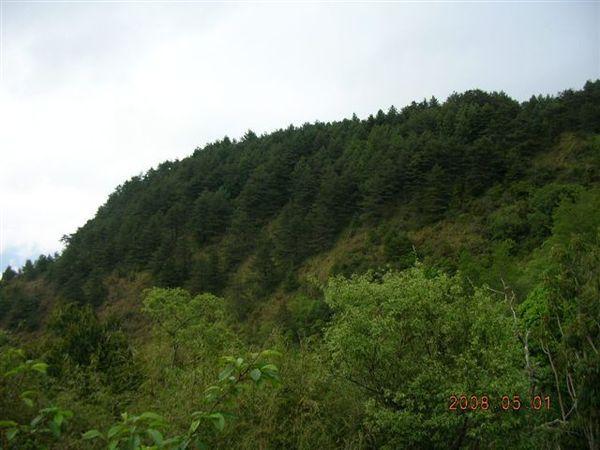 06登山口山景.JPG