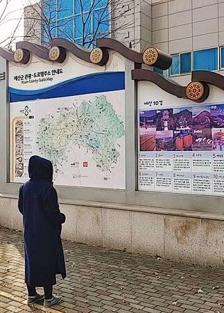 한국에 있는 유.jpg