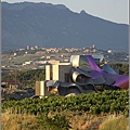 Riscal-Gehry.jpg