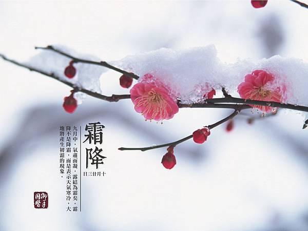 24節氣-霜降養生@ 台南按摩推薦-...