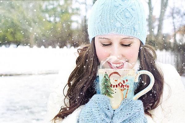 winter-1878713_960_720.jpg