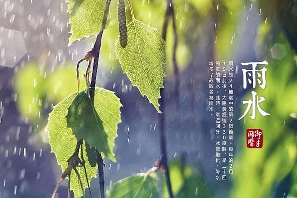 2017雨水圖.jpg