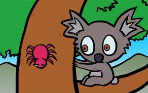 koala-04.jpg