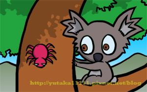 koala-05.jpg
