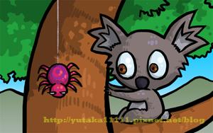 koala-07.jpg