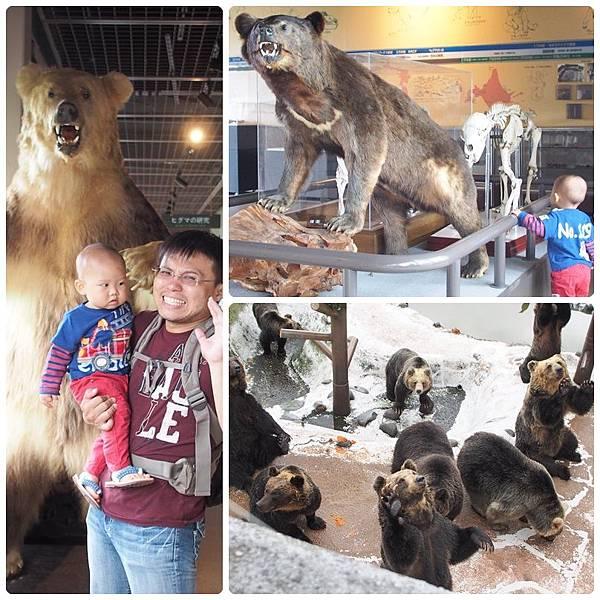 bear park 2