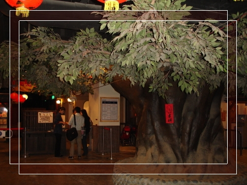 門口的大樹