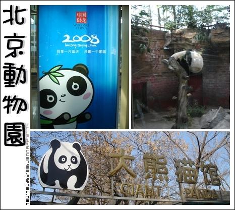 BeijingZoo_01.jpg