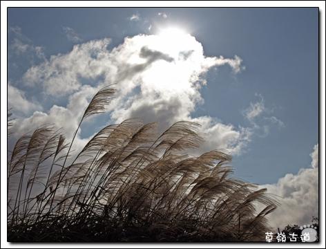 2008草嶺古道-9.jpg