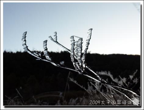 2009-太平山翠峰湖1.jpg
