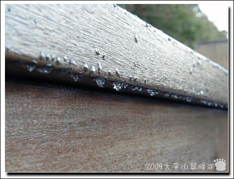 2009-太平山翠峰湖4.jpg