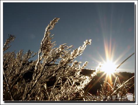 2009-太平山翠峰湖8.jpg