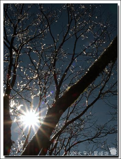 2009-太平山翠峰湖18.jpg