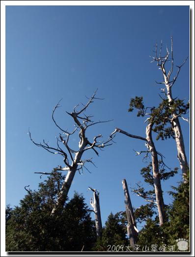 2009-太平山翠峰湖24.jpg