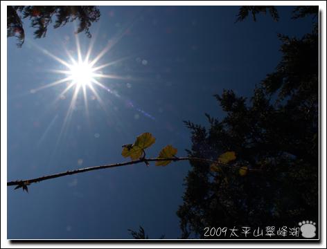 2009-太平山翠峰湖33.jpg