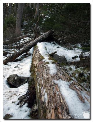 雪山-14.jpg