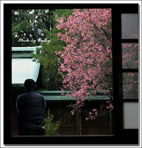 桃園神社外拍-1.jpg