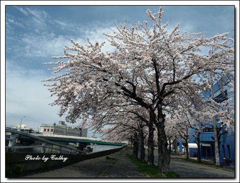 堤川-1a.jpg