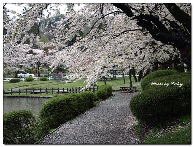 高松之池-1a.jpg