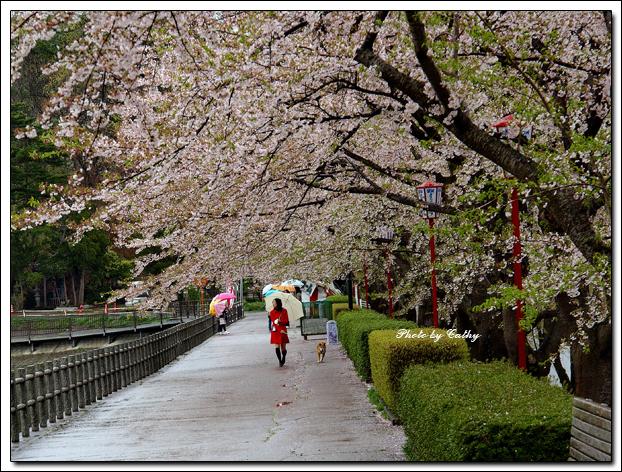 高松之池-2.jpg