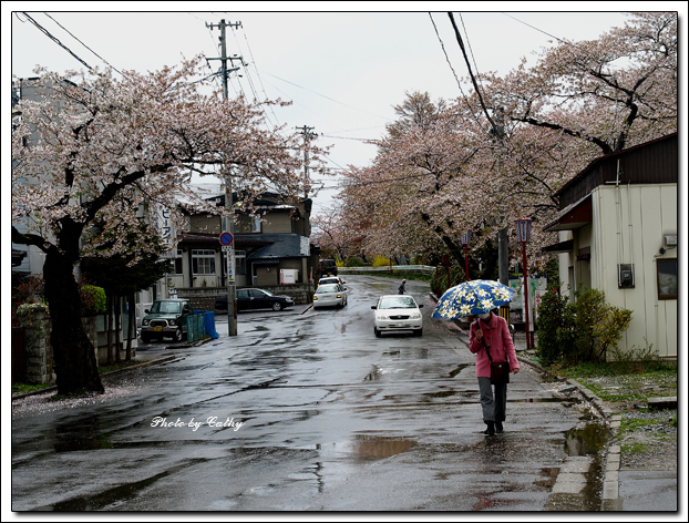 高松之池-4.jpg