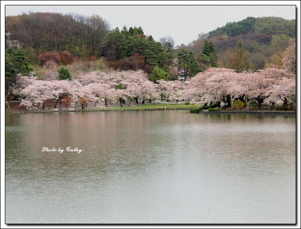高松之池-5.jpg