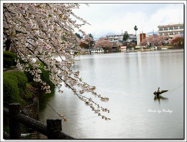 高松之池-6.jpg