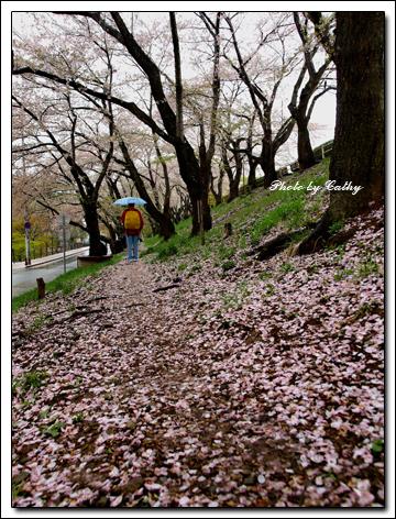 高松之池-8.jpg