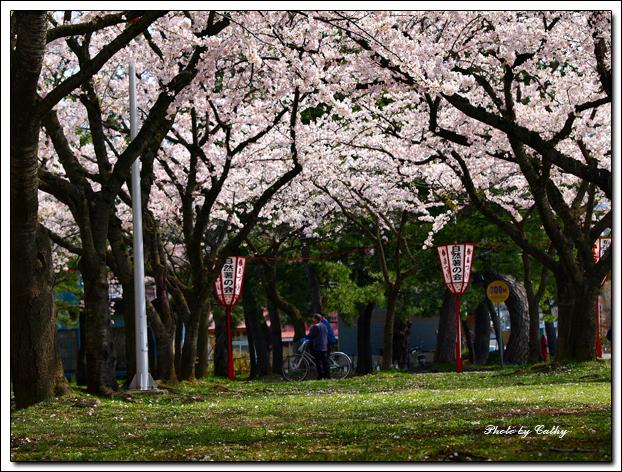 合浦公園-2.jpg